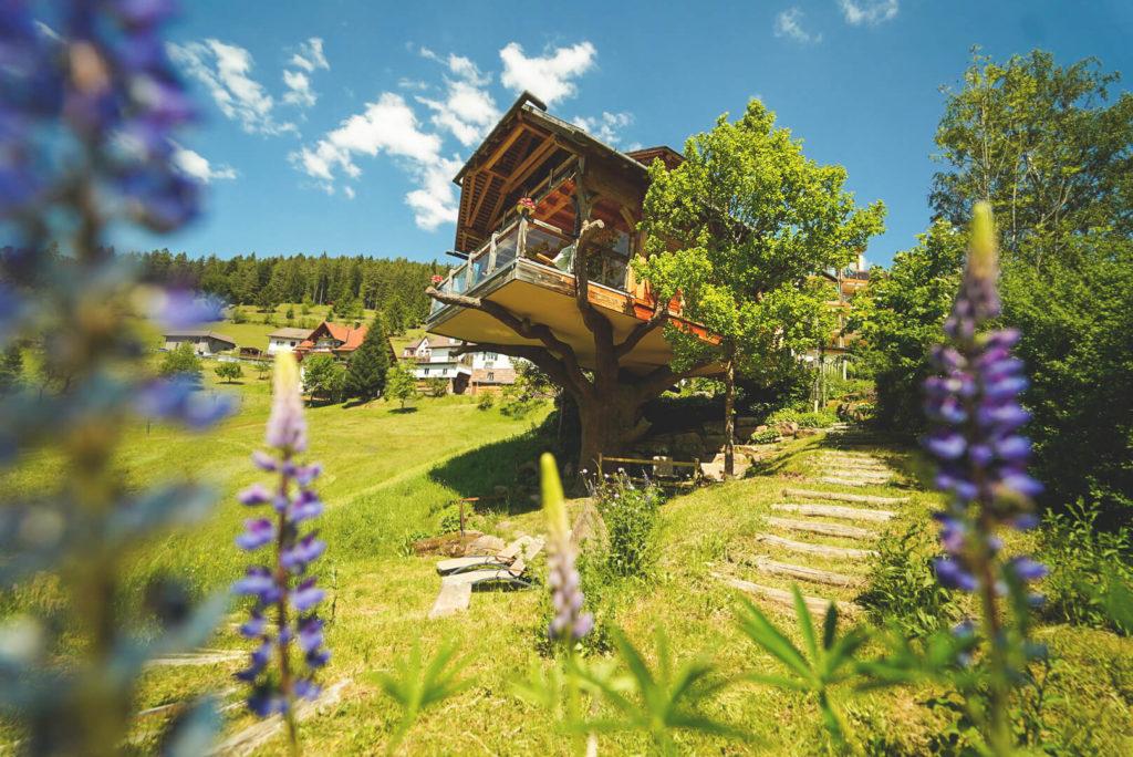 Baiersbronn-Schwarzwald-Urlaub-Wellnesshotel-Tanne-Baumhaus