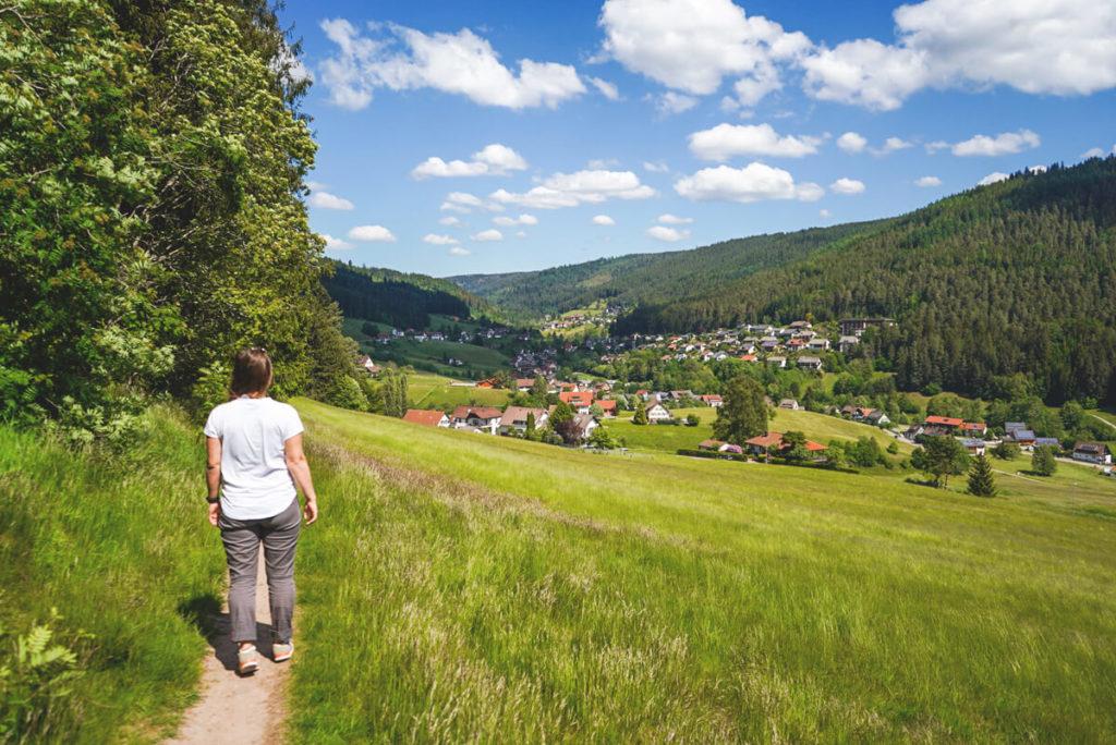 Baiersbronn-Schwarzwald-Wanderung-Geniesserpfad-Sattelei-Ausblick