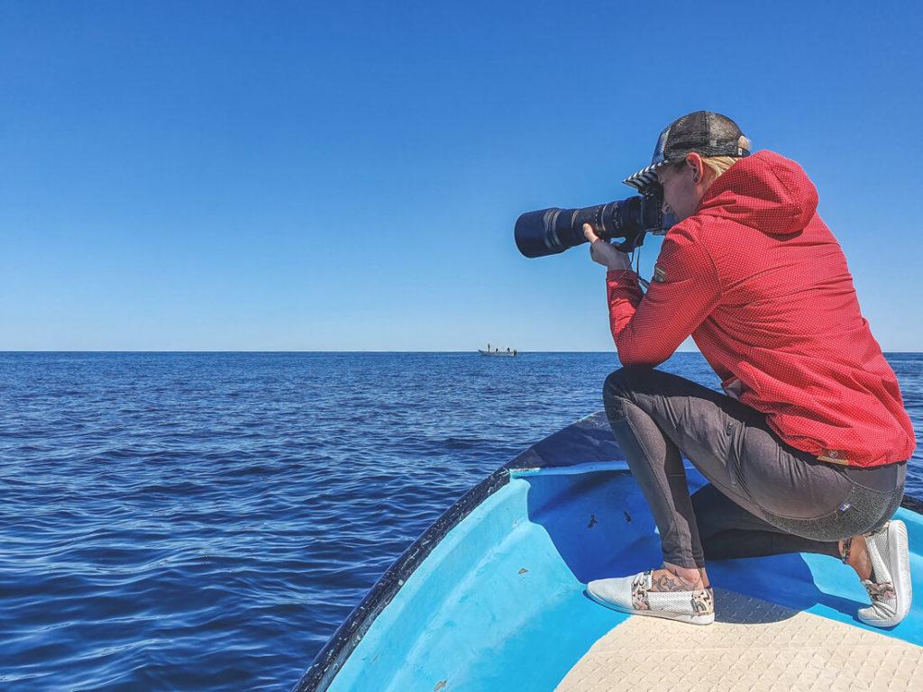 Baja-California-Magdalena-Bay-Whale-Watching-1