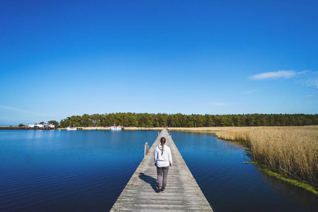Sommerurlaub in Mecklenburg Vorpommern - Wanderung im Nationalpark Vorpommersche Boddenlandschaft