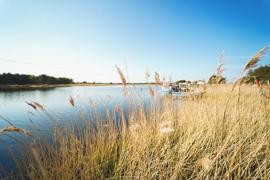 Nothafen-Nationalpark-Vorpommersche-Boddenlandschaft-See