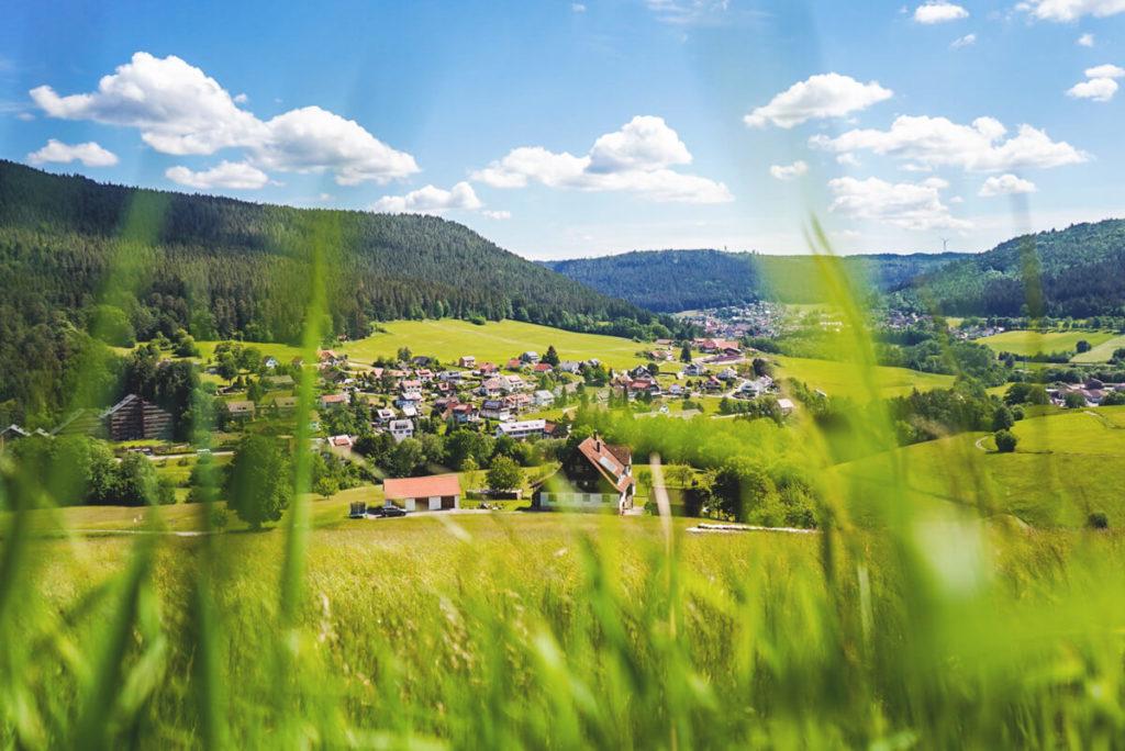 Schwarzwald-Baiersbronn-Wanderung-Satteleisteig-Geniesserpfad