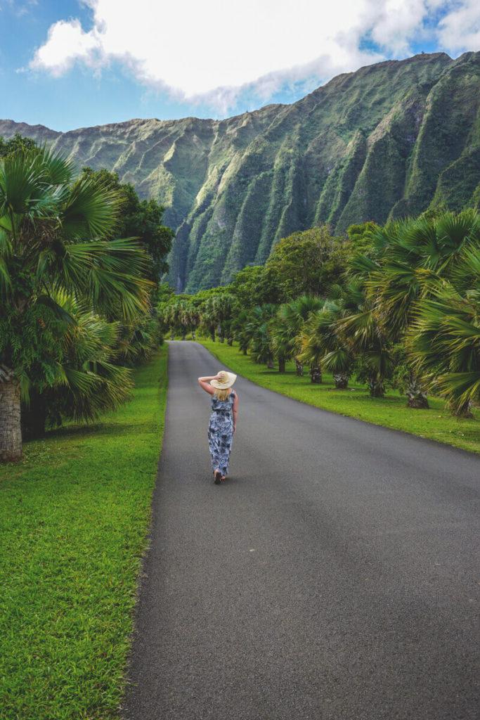 Hawaii-Highlights-Botanical-Garden-Oahu (1)