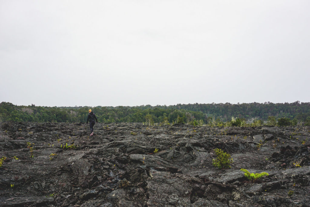 Hawaii-Volcanoes-National-Park-Big-Island
