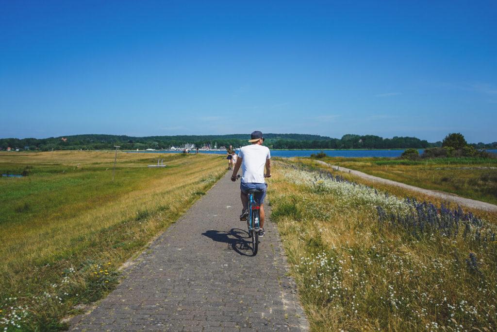 Insel-Hiddensee-Fahrrad-mieten