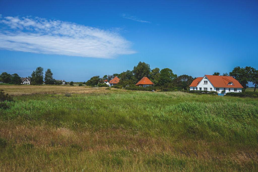 Insel-Hiddensee-Heide-Haeuser
