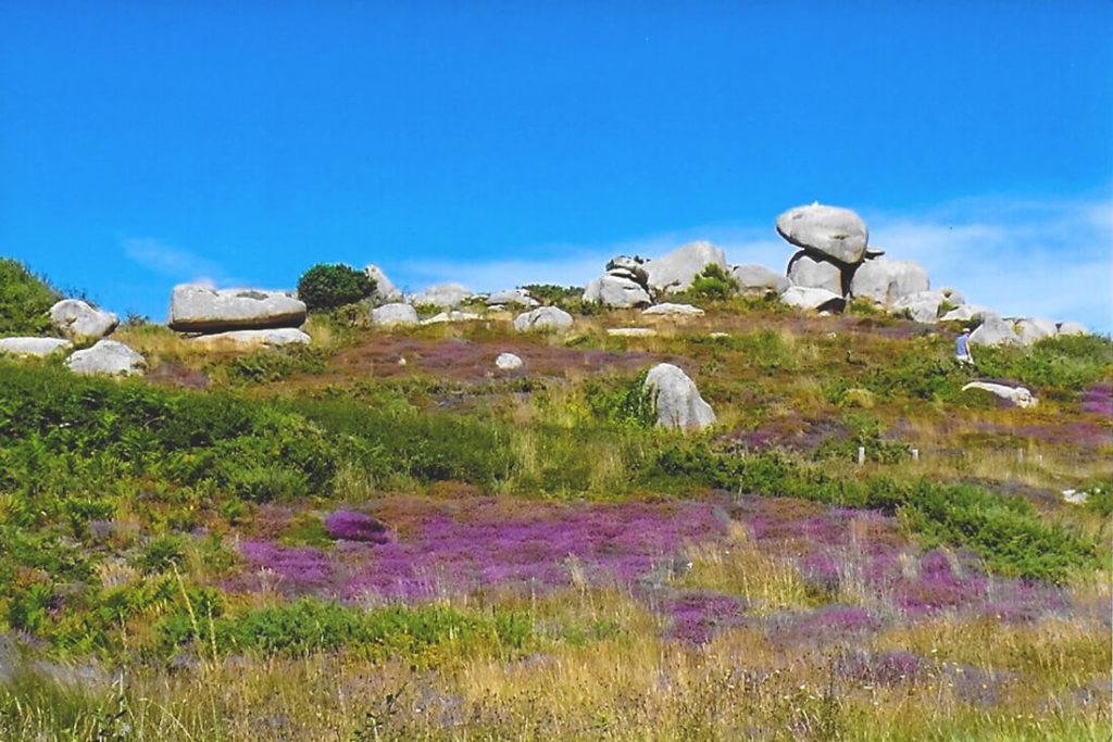 Nordfrankeich-Bretagne-Cote-de-Granite-Rose-1