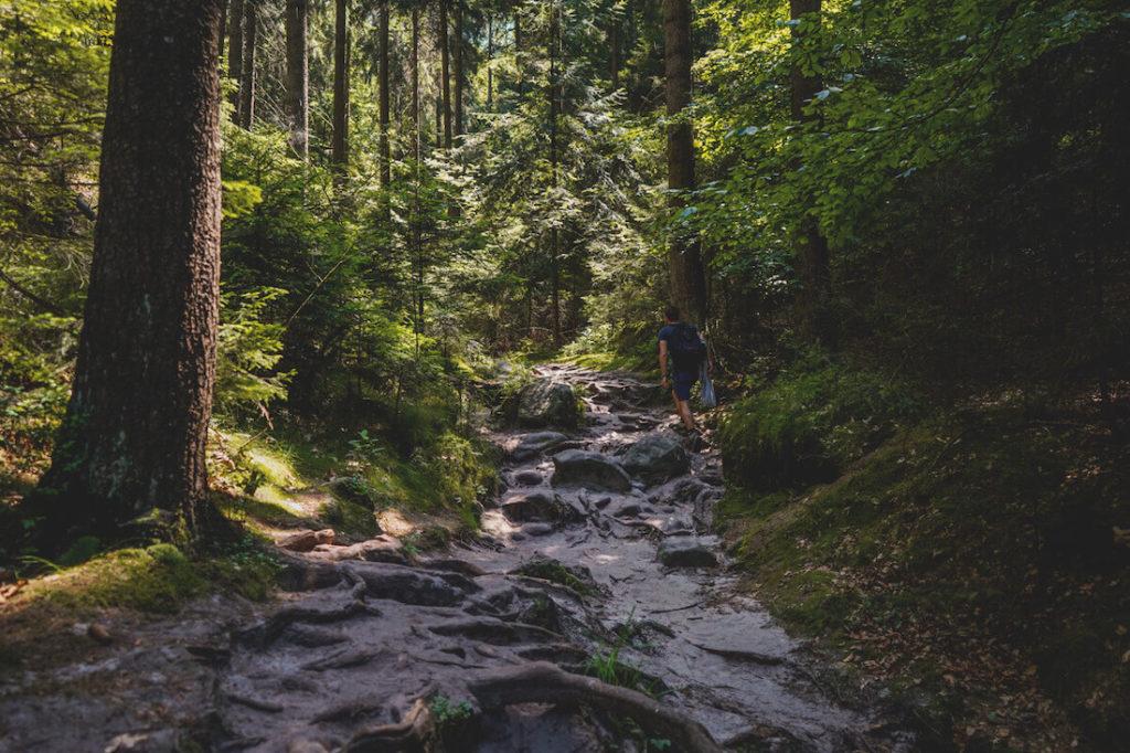 Saechsische-Schweiz-Wilde-Hoelle-Wanderungen