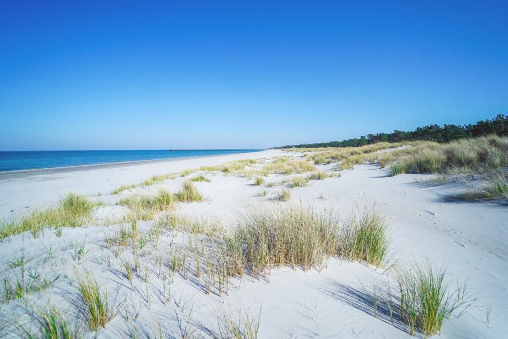 Urlaubsort-Ostsee-Prerow-Strand