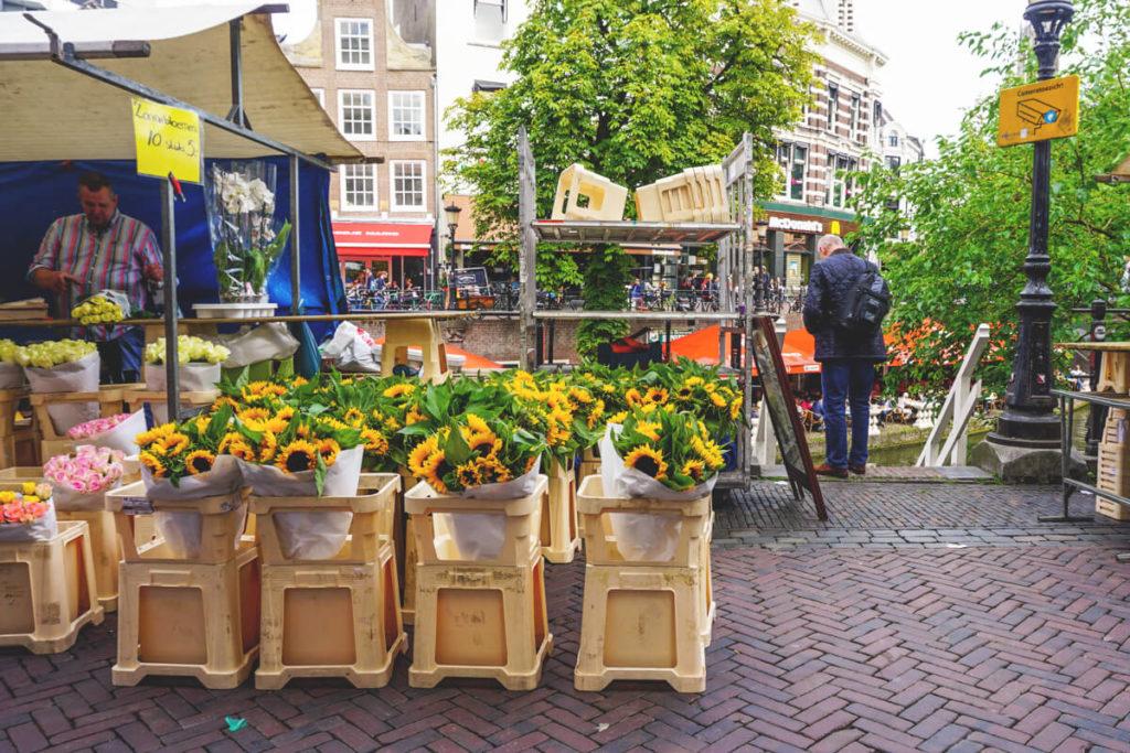 Blumenmarkt-Utrecht-Highlights-Niederlande