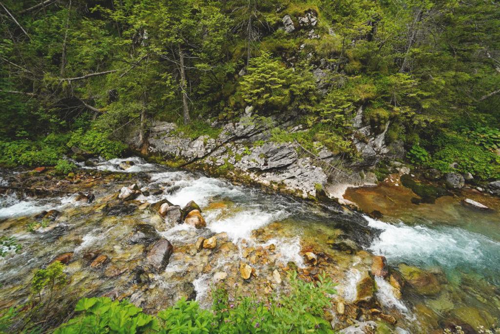 Hohe-Tatra-in-Polen-Tal-Dolina-Koscieliska-Fluss