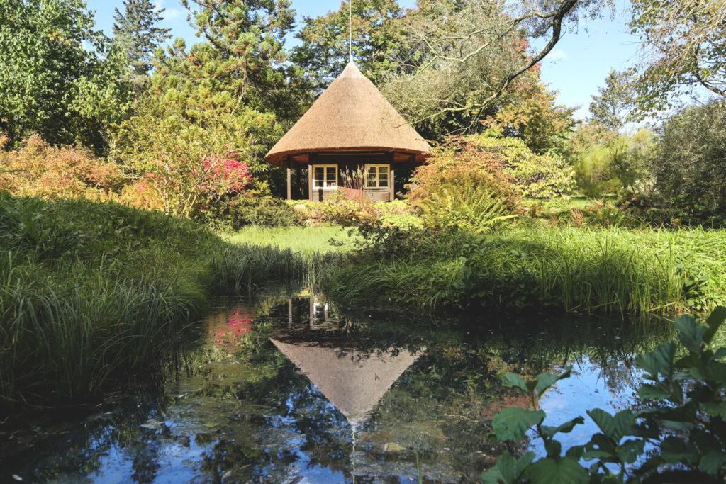 Rostock Sehenswürdigkeiten Botanischer Garten Teich