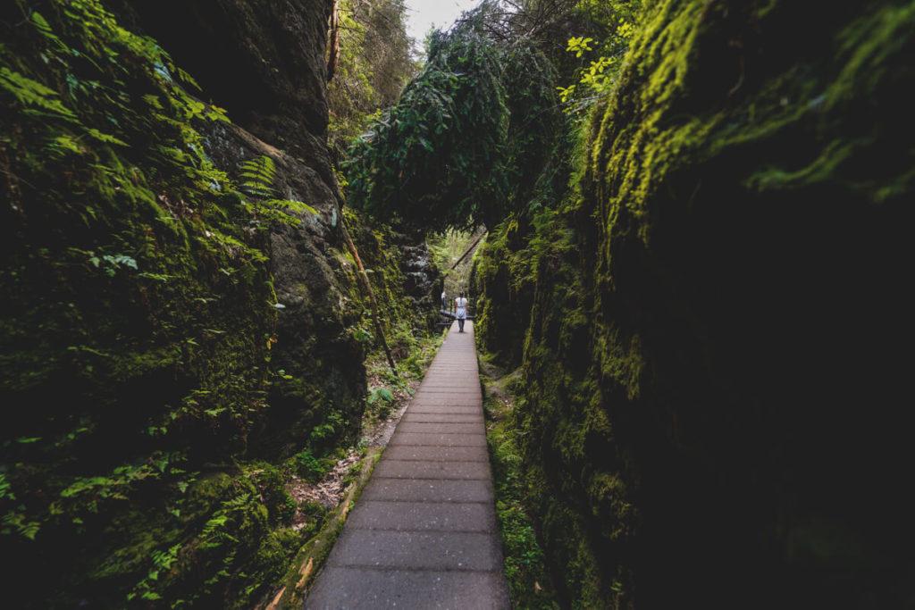 Sehenswürdigkeiten in der Sächsischen Schweiz Schwedenlöcher