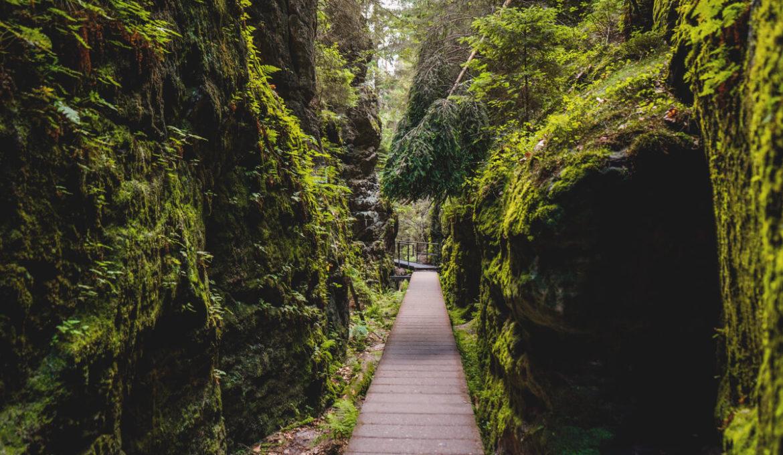 Schwedenlöcher Wanderung – Unsere Route, Highlights & Tipps