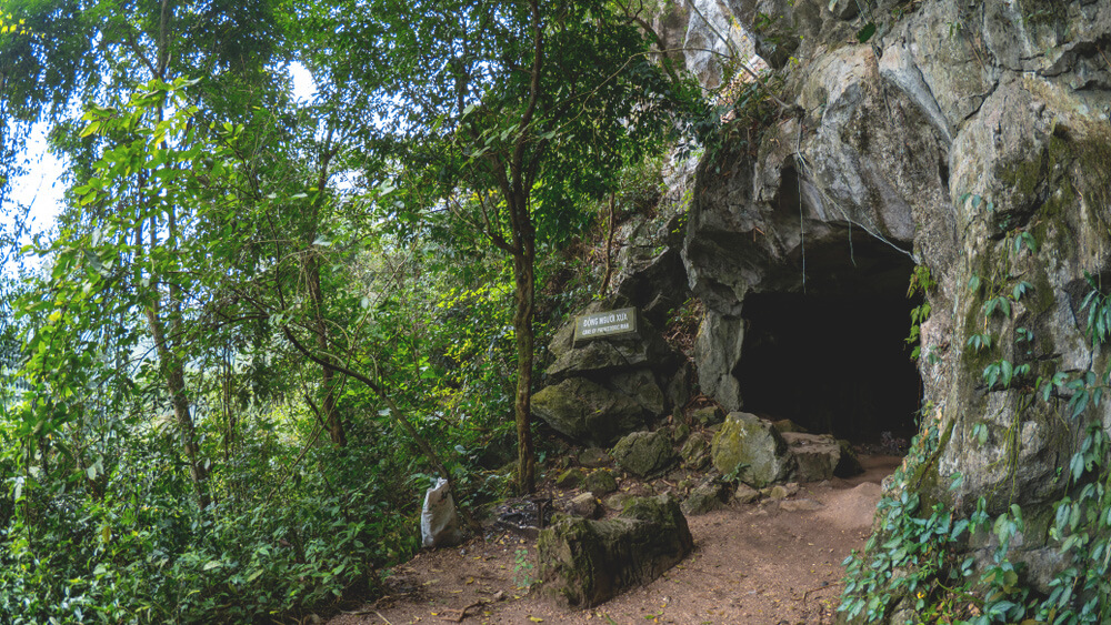 Vietnam-Highlights-Hoehle-Nationalpark-Cuc-Phuong-