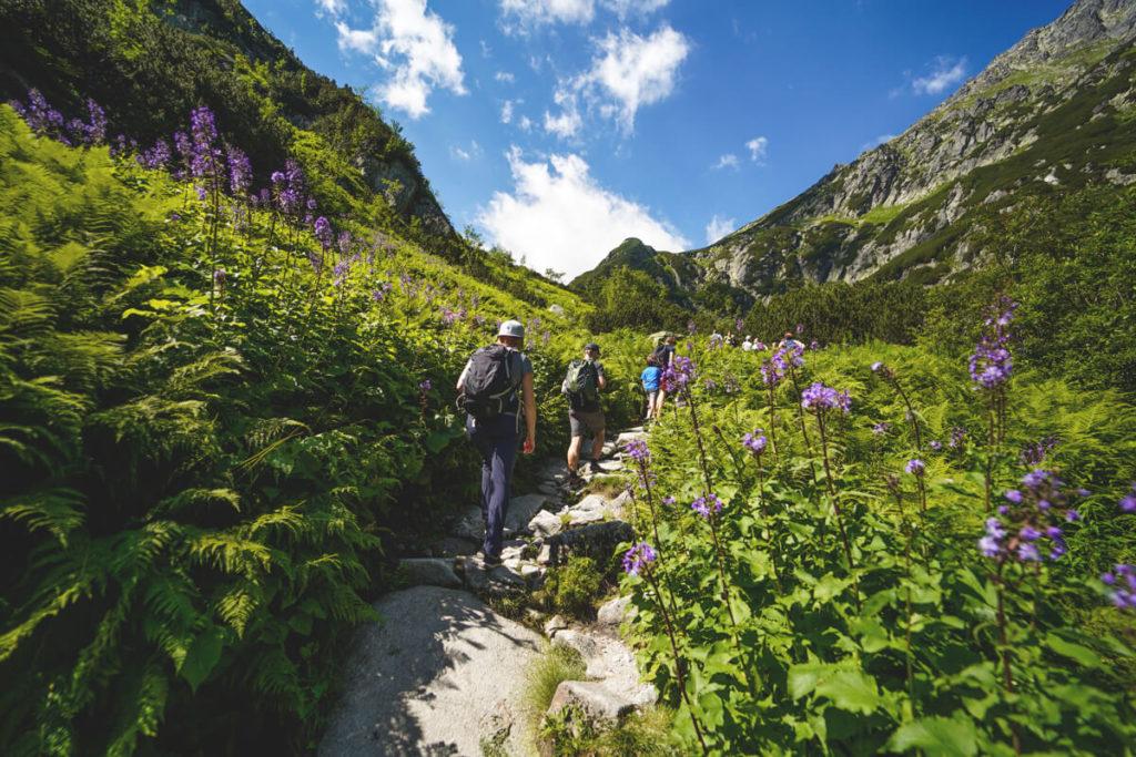 Wanderung-Hohe-Tatra-Polen-Tal-der-5-Seen