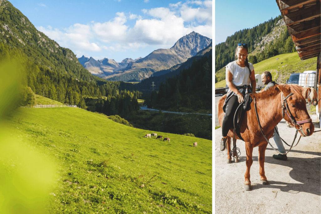 Innsbruck Outdoor Aktivitäten Islandpferde Trekking Reiten