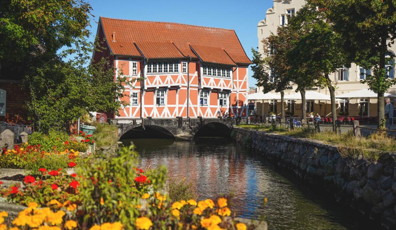 Wismar-Rote-Haus-Grube-Gewoelbe