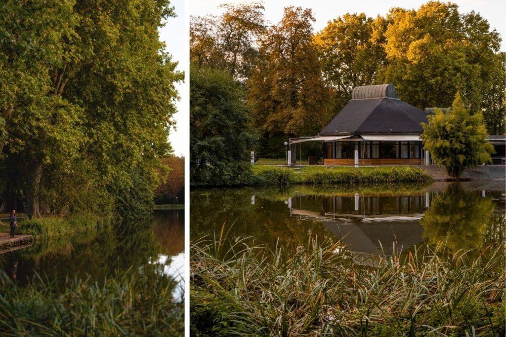 Wochenende-in-Stuttgart-Schlosspark-Wald