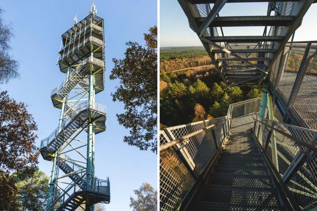 Kaeflingsbergturm-Mueritz-Nationalpark-Treppen