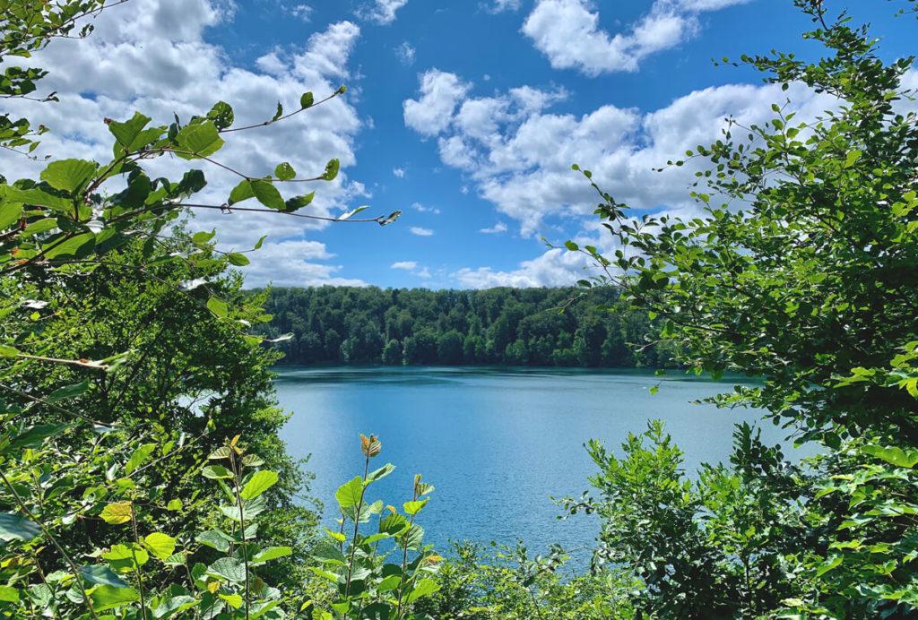 Wandern-Eifel-Tipps-See-Wald