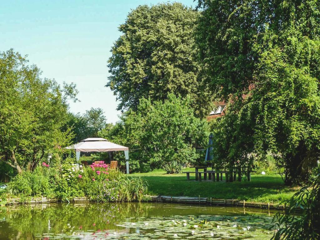 Bio-Wildhof-Lalendorf-Garten-See
