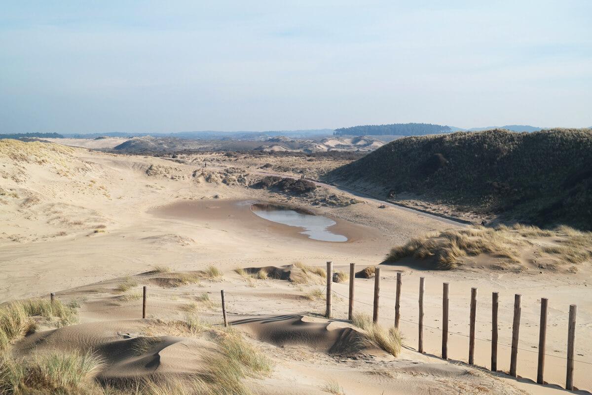 Nordholland-Nationalpark-Zuid-Kennemerland