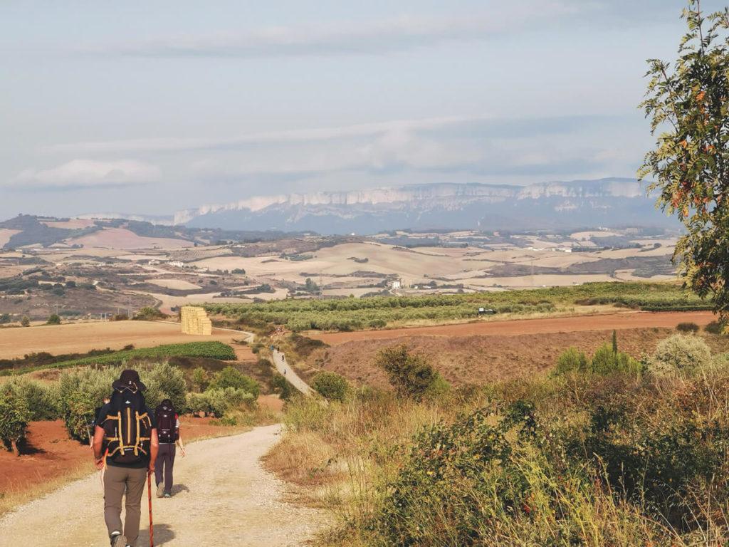Camino-Frances-Jakobsweg-Wanderung