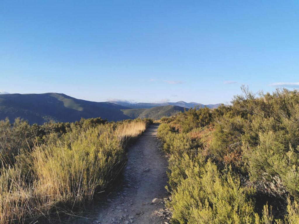 Jakobsweg-Camino-Frances-Wanderung-8