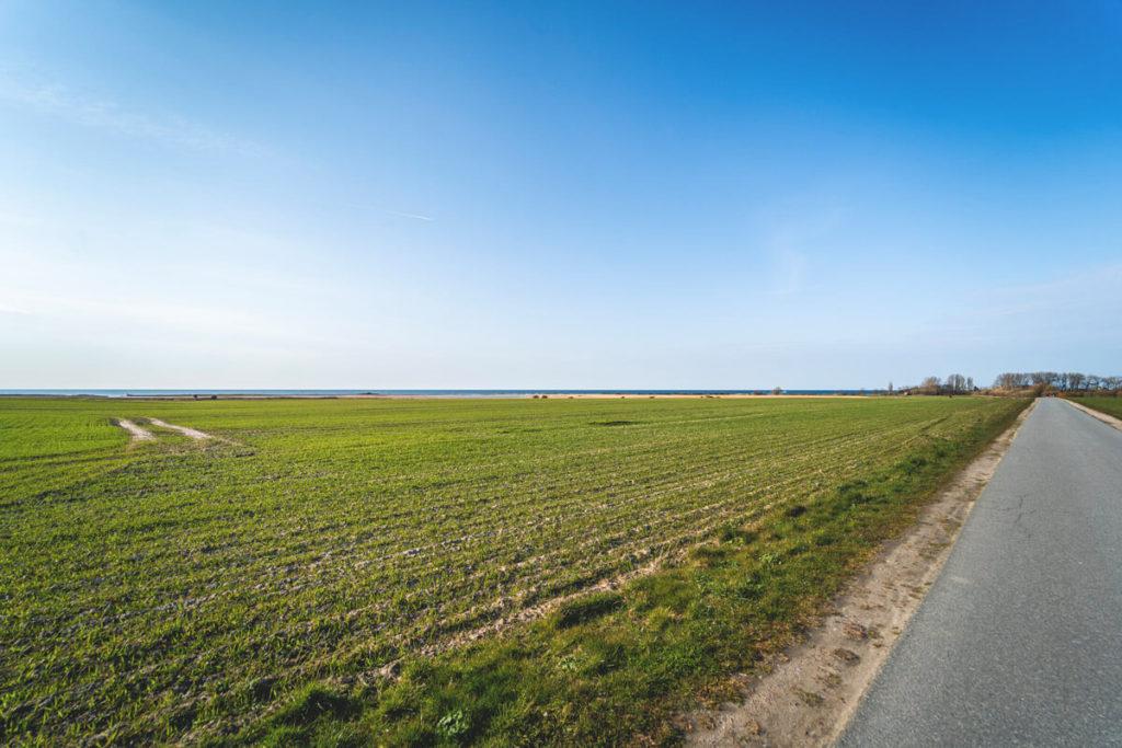 Ostseeküstenradweg Naturschutzgebiet Riedensee