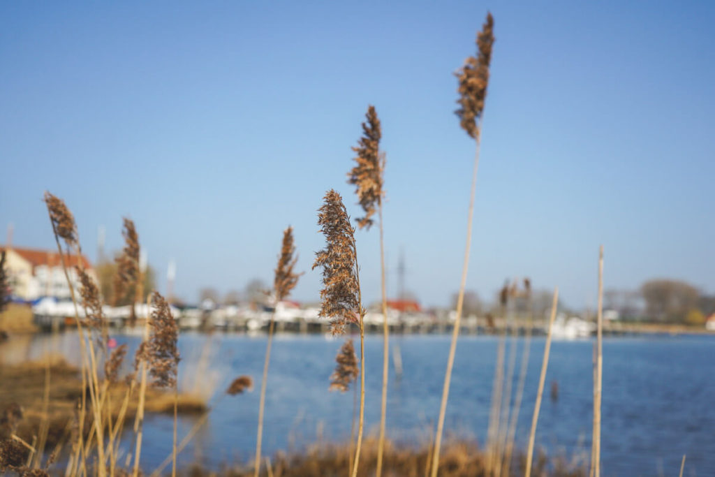 Insel-Poel-Kirchdorf-Hafen-Kirchsee