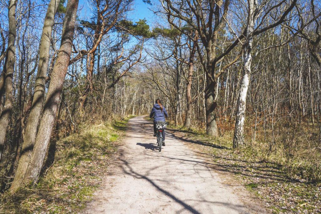 Ostseekuestenradweg-graal-mueritz-fahrradfahren