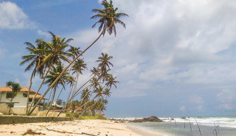 Sri Lanka Rundreise – Meine top Sehenswürdigkeiten und Reisetipps