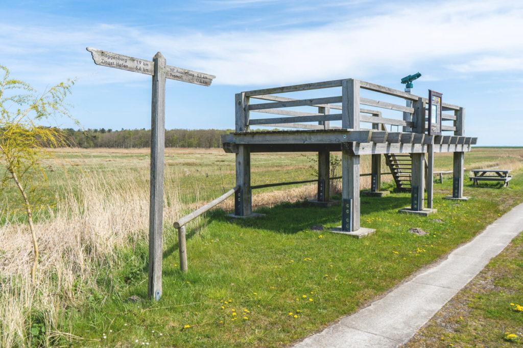 Fischland-Darss-Fahrradtour-Pramort-Aussichtsplattform