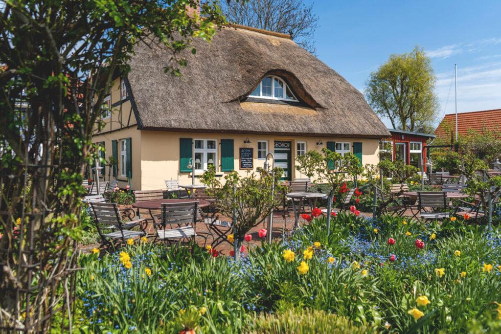 Fischland-Darss-Ostseebad-Zingst-Cafe-Rosengarten