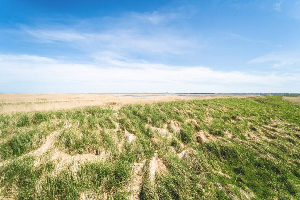 Pramort-Aussichtspunkt-Fischland-Darss-2
