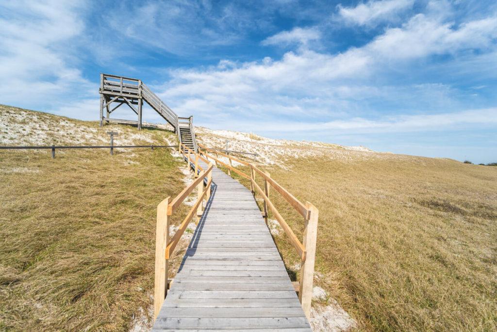 Pramort-Hohe-Duene-Aussichtsturm-Nationalpark