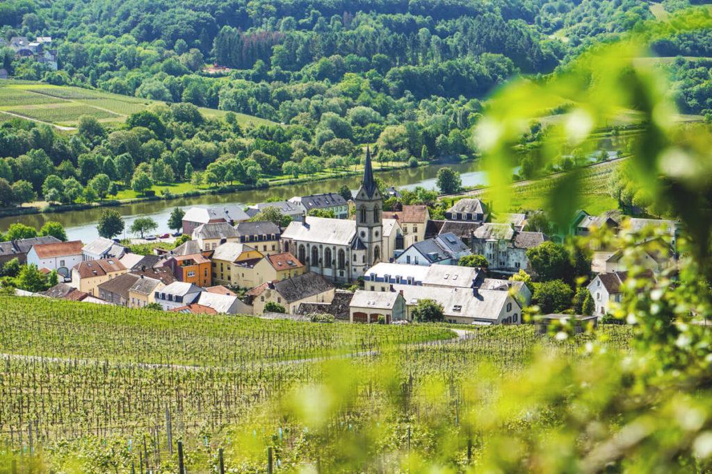 Mosel-Luxemburg-Wanderung-Ahn