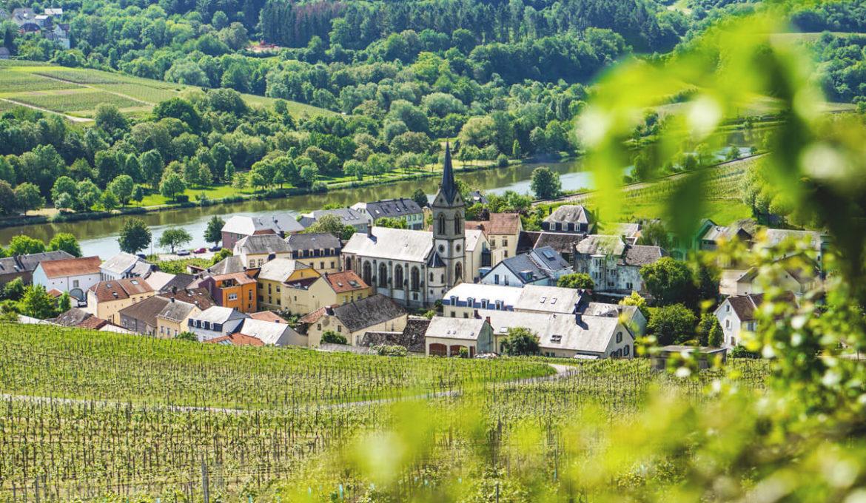 Urlaub an der Mosel in Luxemburg – Weine, Wandern & Genießen