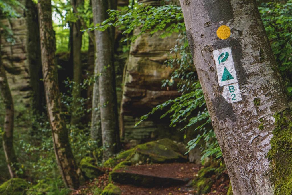 Rundreise-Luxemburg-Mullerthal-Wanderweg-Schild