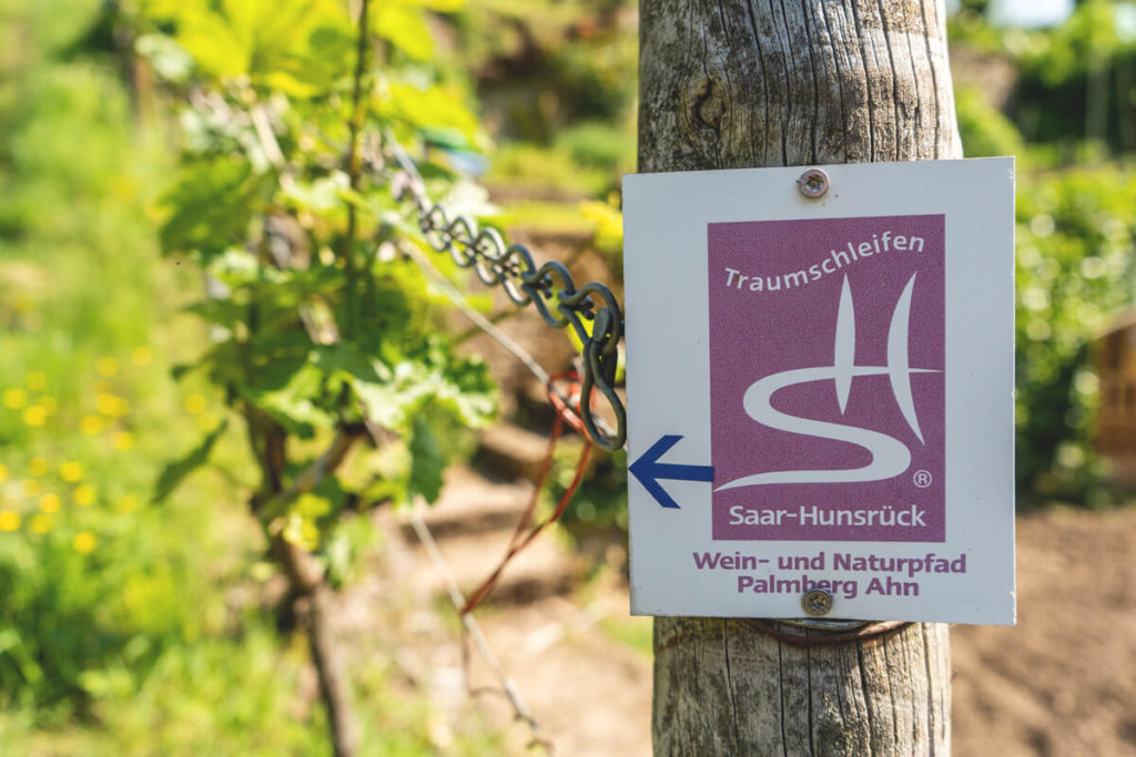 Traumschleife Wein- und Naturpfad Palmberg Ahn