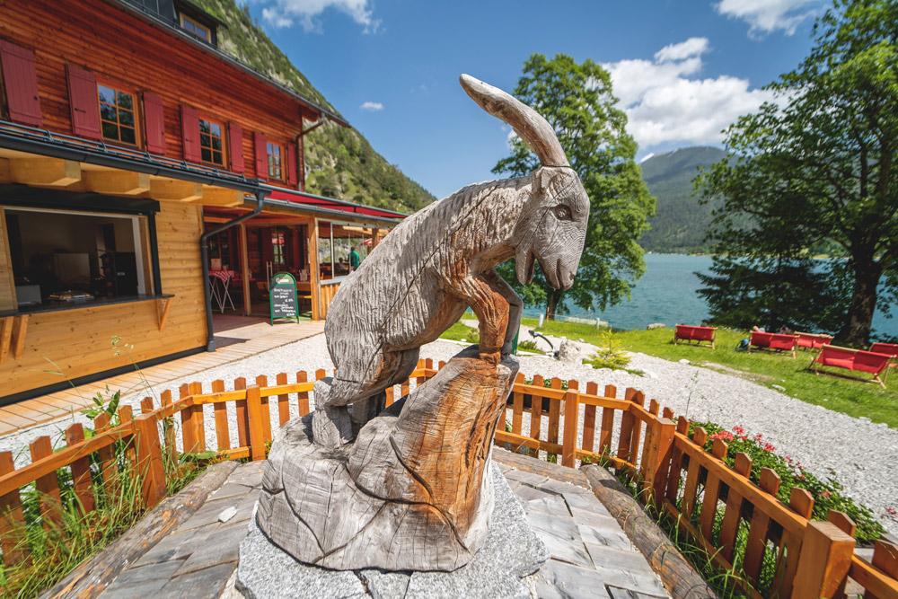 Gaisalm-Achensee-Tirol