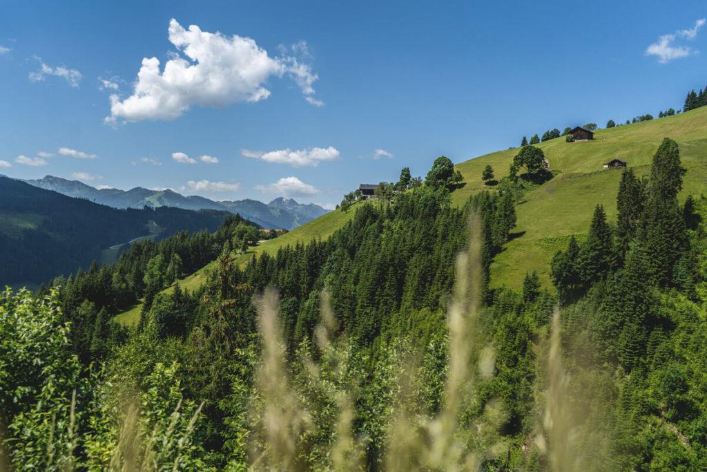 Salzburger-Land-Flachau-Wagrain-Aussicht