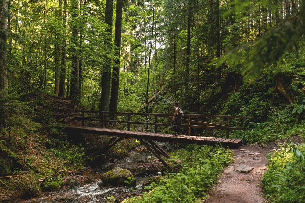 Lotenbachklamm-Wutachschlucht-Schwarzwald-Wanderung-1