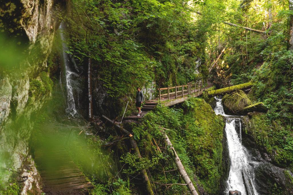 Wanderung-Wutachschlucht-Lotenbachklamm-Schwarzwald