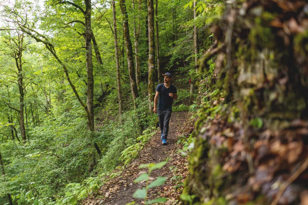 Wanderweg-Wutachschlucht-Highlights-Schwarzwald